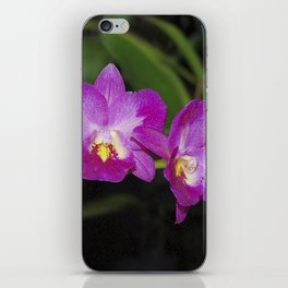 Magnificent Magenta Orchid - Ctna Capri iPhone Skin