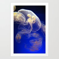 jelly fish Art Prints featuring Jelly Fish by Shannon McCullough-Wight