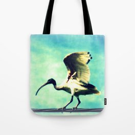 Ibis Bird Tote Bag
