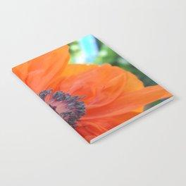 Orange Poppy Notebook