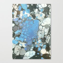 Pure Phase  Canvas Print