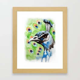 Majestic - Peacock watercolor art print Framed Art Print