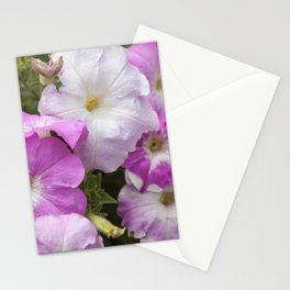 Petunia Arrangement Stationery Cards