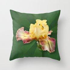 Yellow Iris Flowers on Radial Green Stripes Throw Pillow