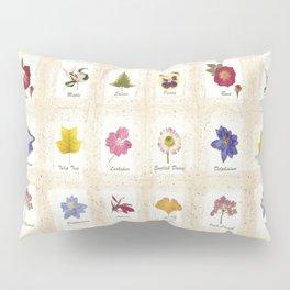 Botanical Art Pillow Sham