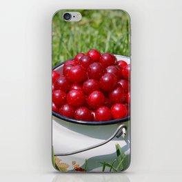 Prunus cerasus sour cherry fruits iPhone Skin