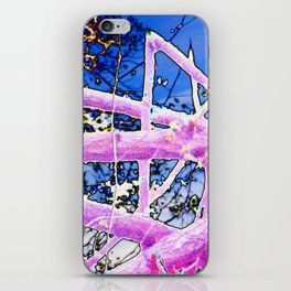 After the Storm - Hurricane Michael Aftermath iPhone Skin
