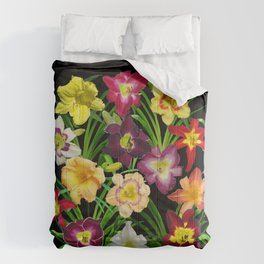 Display of daylilies I Comforters