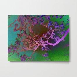 Magnolia tree abstract Metal Print