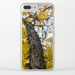Autumn in the Catskill Mountains Clear iPhone Case
