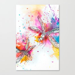 Anatomy of a Dragonfly Canvas Print
