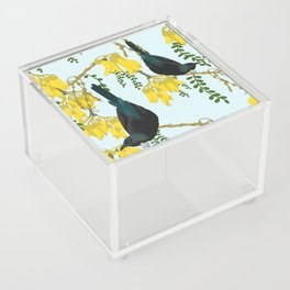 Tuis in the Kowhai Flowers Acrylic Box