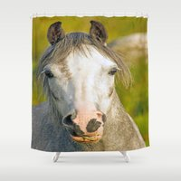 pony Shower Curtains featuring Welsh Pony  by Doug McRae