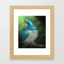 NZ Native Pigeon Kereru Framed Art Print