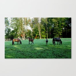 2002 The Estate of Charles Bronson, West Windsor Vermont Canvas Print
