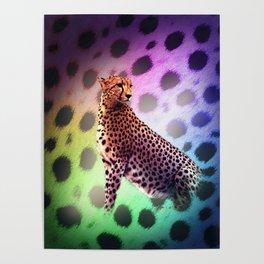 Cute Rainbow Cheetah Poster