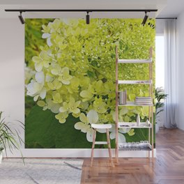 Elegant Chartreuse Green Limelight Hydrangea Macro Wall Mural
