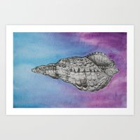shell Art Prints featuring shell by Diane Nicholson