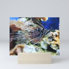 Fish Mini Art Print