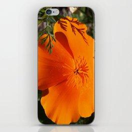 Brilliant California Poppy iPhone Skin