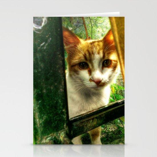 Daisy Cat Stationery Cards
