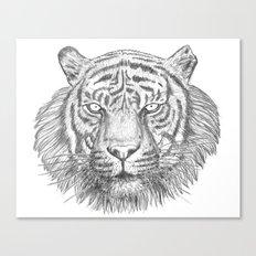 The Tiger's head Canvas Print