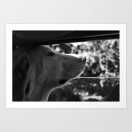 Travel Partner Art Print