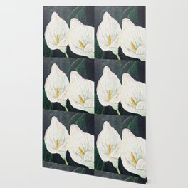 Calla Lily ... Winter Lilly Lily Lilies Lillies White Wallpaper