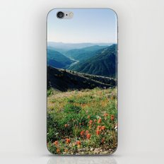 Gifford Pinchot National Forest iPhone & iPod Skin