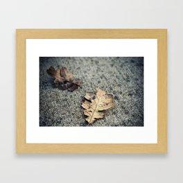 droplet (Oregon) Framed Art Print