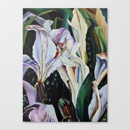 Wilt Canvas Print