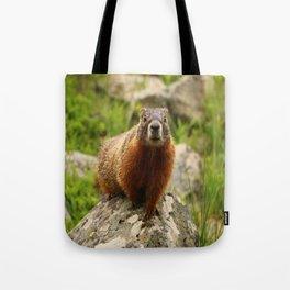 On The Rocks Marmot Tote Bag