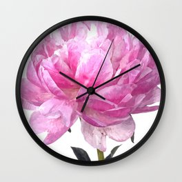 Pink peony illustration Wall Clock