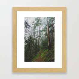 The Gorge - Pacific Crest Trail, Oregon Framed Art Print