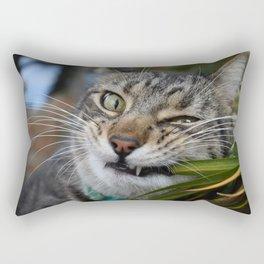 Cat Snack Rectangular Pillow