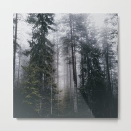 Into the forest we go Metal Print