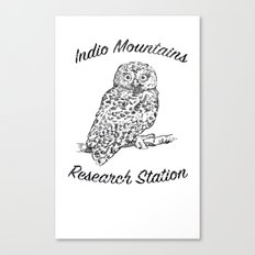 Indio Mountains Research Station - Elf Owl Canvas Print