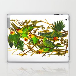 Carolina Parrot Laptop & iPad Skin