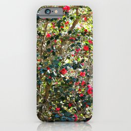 Blooming Camellia Tree iPhone Case