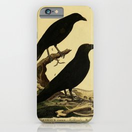 Crow And Raven iPhone Case