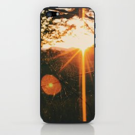 Shimmering Web • Appalachian Trail iPhone Skin