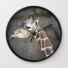 Philadelphia Zoo Series 21 Wall Clock