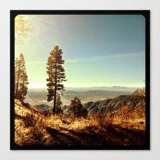 Nature. Canvas Print