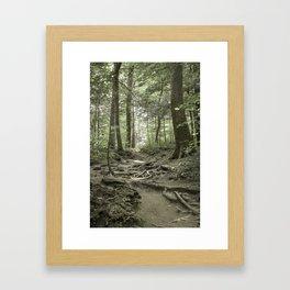 Trail to the Light Framed Art Print