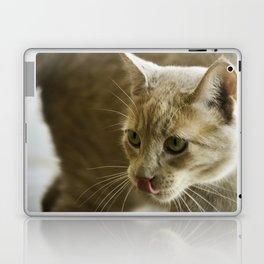Little Lion Laptop & iPad Skin