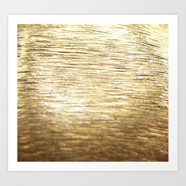 Gold Vermeil Art Print