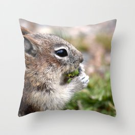 ground squirel having a snack Throw Pillow