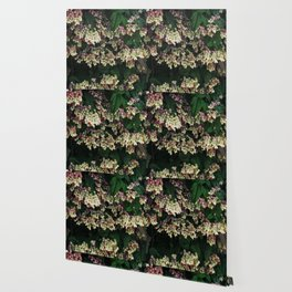 Bagflower Wallpaper