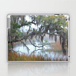 Daniel Island Marsh 1 Laptop & iPad Skin