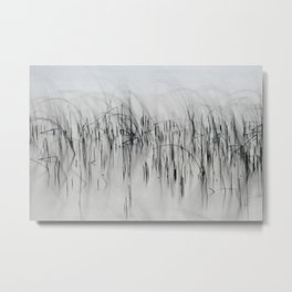 Evening Music - Calm and Peaceful Grasses Metal Print